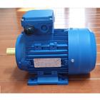 elektro motor 3 Phase  1