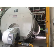 Wns Gas (oil) Fired Steam Boiler/Hot-Water Boiler