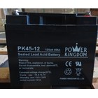 Baterai Kering Power Kingdom Pk 45-12 12V 45 Ah - Aki Accu 1