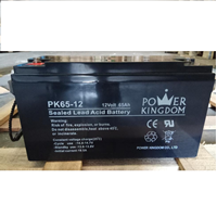 Baterai Aki Power Kingdom PK65-12