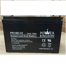 Baterai Aki Power Kingdom PK100-12