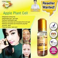 Collagen Plantcell Apple Serum