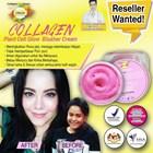 Collagen Stemcell Blusher Cream 1