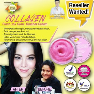 Collagen Stemcell Blusher Cream