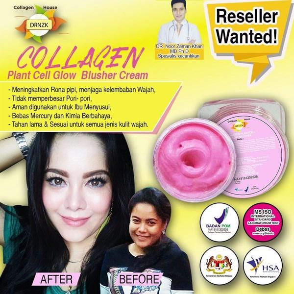 Collagen Stemcell Blusher Cream