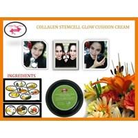 Collagen Stemcell Cushion