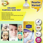 Collagen Plantcell Glow Soap 1