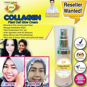 Collagen Stemcell Glow Cream