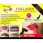 Collagen Plantcell Lipstick 1
