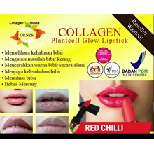 Collagen Plantcell Lipstick