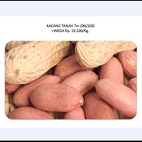 Jual Kacang Tanah 7m