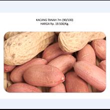 Kacang Tanah 7m