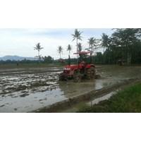 Distributor  Traktor AP404 3