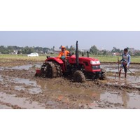 Beli  Traktor AP404 4