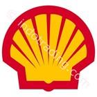 Oli Shell 1