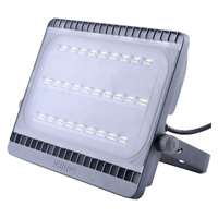 Lampu Sorot Led Philips Bvp161 100 Watt