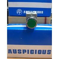 Push Buttom APB-22  1