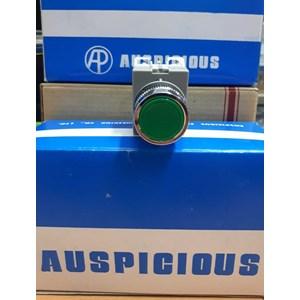 Push Buttom APB-22