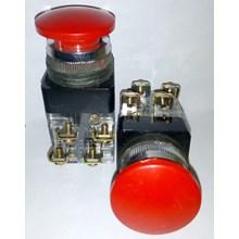 Push Buttom MPB 2511 25mm