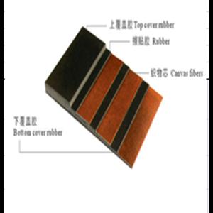 Polyester Polyamide Conveyor Belt