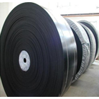 Nylon Conveyor Belt 1