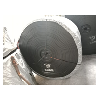 Conveyor Belt Nylon