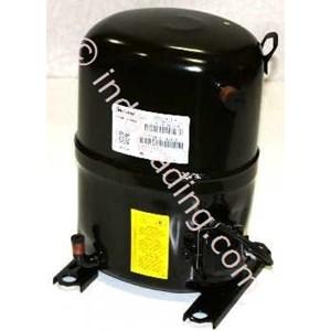 Compressor Bristol H2ng184  Dpef( 15Pk )