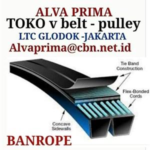 Dari TIMING Belt BANROPE BELT STOKIST TOKO ALVA LTC GLODOG   1