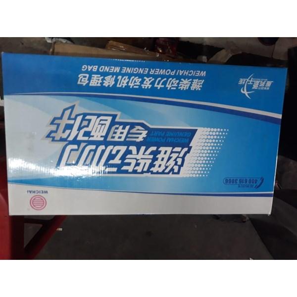 Packing Set Wechai WD 10 XCMG ZL 50 G