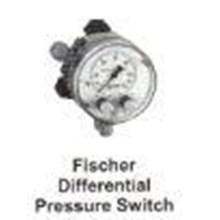 Fischer Differential Pressure Switch