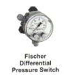 Fischer Differential Pressure Switch