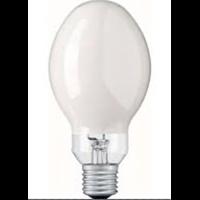 Lampu Bohlam8