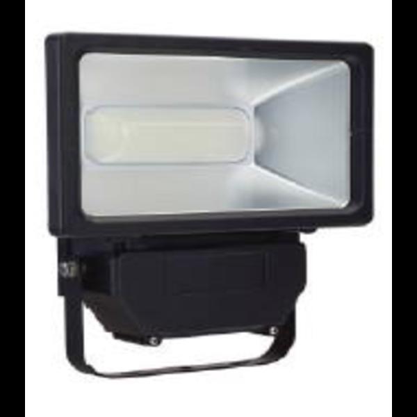 Lampu Sorot Bnj 10W