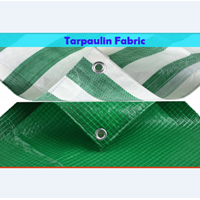Terpauline Fabric