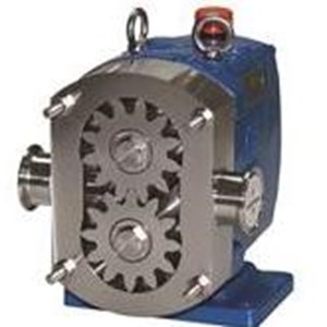 From Rotary Gear Pump  3
