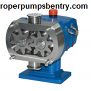 From Rotary Gear Pump  2