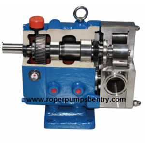 From Rotary Gear Pump  0