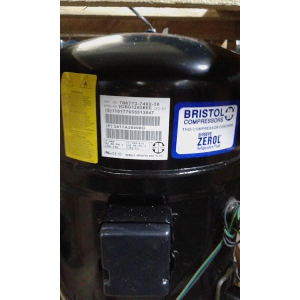 Kompresor AC Bristol H2NG094