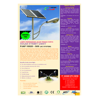 Jual Pju Tenaga Surya 100 Watt - 220 Vac - 9M (P Series) Lampu Solar 2