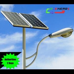 Lampu Jalan Pju Tenaga Surya 70 Watt - 220 Vac - 7M (P Series)