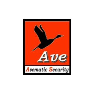 Avematic Security